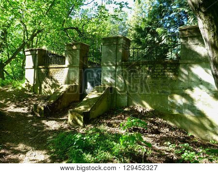 Old Ruined Wall In A Green Forest