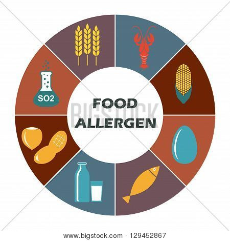 Food allergen icons set isolated on white background. Infographics template. Colorful vector illustration.