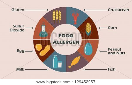 Food allergen icons set. Infographics design element. Colorful vector illustration.