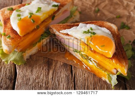 Cut Sandwich With Fried Egg, Ham And Cheese Close-up On The Paper. Horizontal