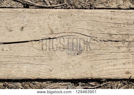 Old cracked wood board in dry dirty soil as a background