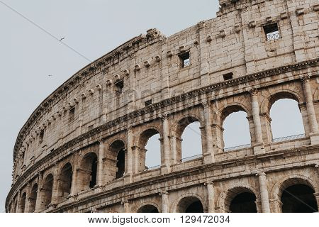 Outdoors view of Coliseum in Rome city center. Italy.