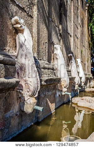 Close up of Martinho Fountain, in Castelo de Vide, Portugal. 17th century fountain with white marble dolphins serving as water-pipes.