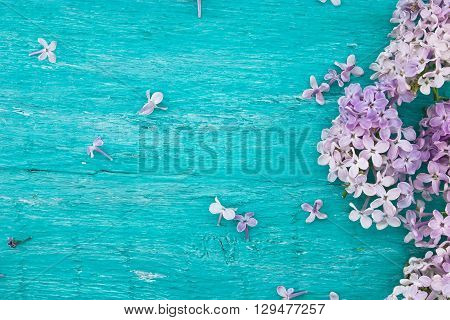 Lilac Blossom On Turquoise Rustic Wooden Background With Empty Space For Greeting Message. Mother's