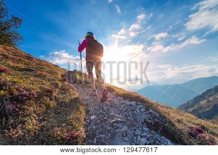 Sporty Woman Walking Nordic