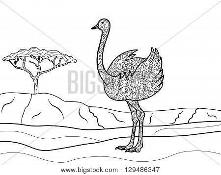 Ostrich bird coloring book for adults vector illustration. Black and white lines. Lace pattern