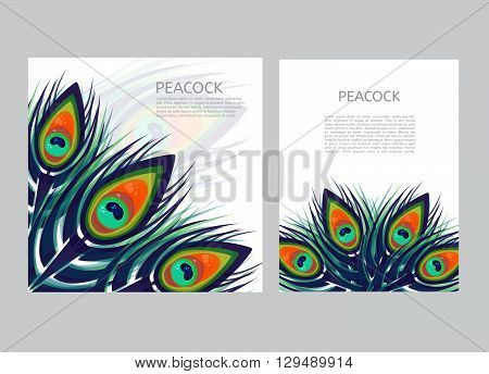 Set of creative multicolored letterhead template with peacock feathers. Low polygon style vector. Brochure design template.