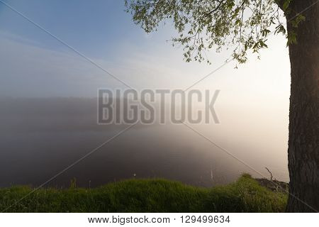 The Springtime Shoreline of a Foggy Mountain Lake at Sunrise.