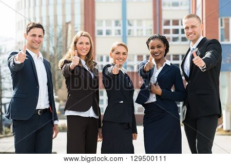Group Of Happy Multi-racial Businesspeople Showing Thumb Ups