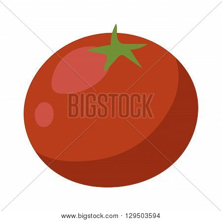 One fresh red tomato isolated on white. Tomato isolated vector red vegetable and food ripe tomato isolated. Tomato isolated ingredient juicy vegetarian healthy food. Single bright nutrition plant.