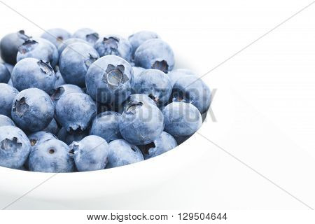 Freshly Picked Organic Blueberries In White Bowl - Close Up Studio Shot With Focus On Berries