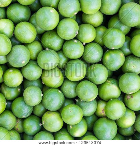 Background of fresh lime. Green lime background.