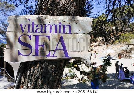 closeup of a wooden sign attached to a pine tree with the text vitamin sea written in it, on the beach