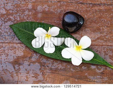Spa massage with flower and rock spa on the leaves, Thailand