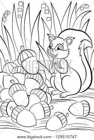 Coloring page. Little cute squirrel stands and looks at a pile of acorns. The squirrel is surprised and happy.