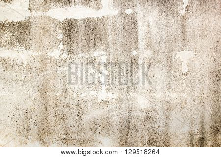 Hi res white grunge textures and backgrounds for any desing