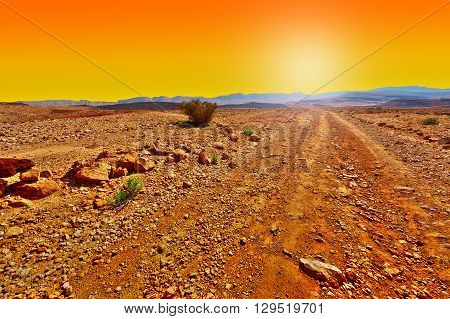 Dirt Road in the Rocky Hills of the Negev Desert in Israel at Sunset