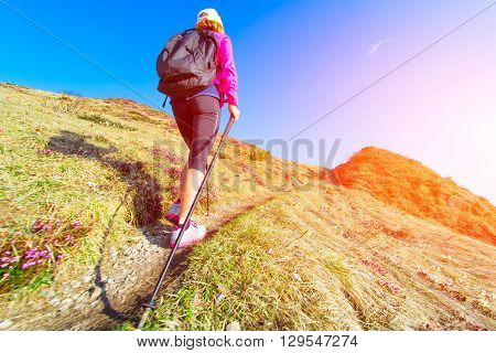 Slender Woman Practicing Nordic Walking