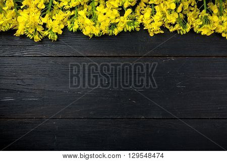Rapeseed on black wooden background. The rapeseed is draped on the top.