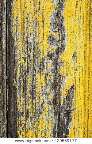 Old damaged and collapsed surfaces painted boards.
