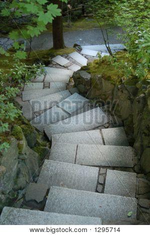 Japanese Garden Walkway