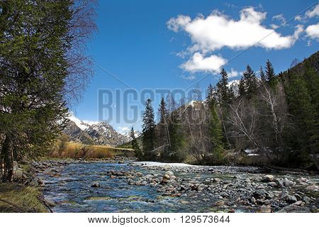 Spring mountain river in the forest, and mountain on background