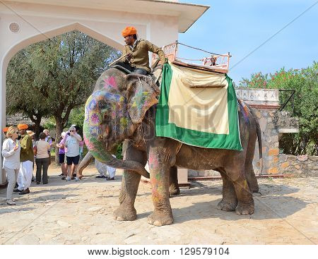 JAIPUR INDIA - NOVEMBER 13 2015: Painted elephant and rider at Dera Amer Elephant Safari. The camp is run by a local family out of their ancestral home.
