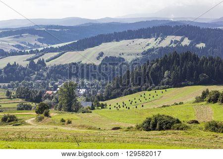 Landscape near the mountain village Kroscienko, Poland