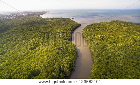 Aerial view of mangrove borneo tropical forest at Kenabenua river,Labuan,Malaysia.