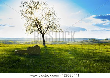 Guitar in case on grass. Summer or spring landscape.