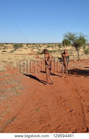 Bushmen Hunters In The Kalahari Desert, Namibia