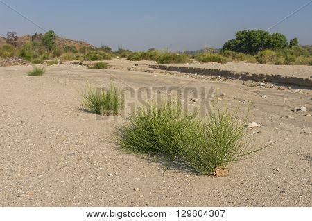 Sand In Santa Clara River