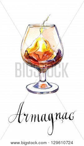Glass of armagnac hand drawn - watercolor Illustration