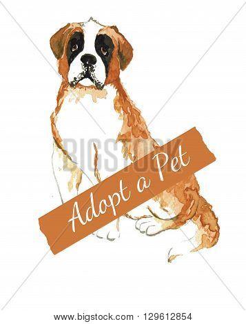 Bernard watercolor. Do not shop adopt. Dog adoption concept.