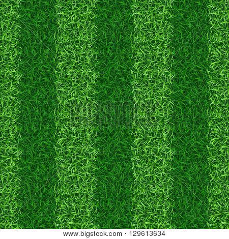 Striped green grass field seamless vector. Grass nature, grass field pattern, seamless grass meadow illustration