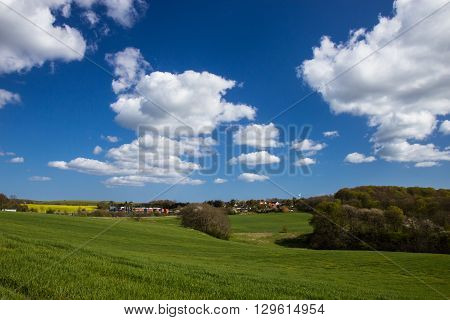 Fields And Meadows Of Jutland