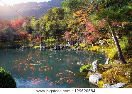 Zen garden of the tenryu-ji temple Arashiyama Kyoto Japan