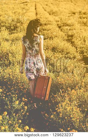 Pretty Young Woman In A Field With A Old Suitcase