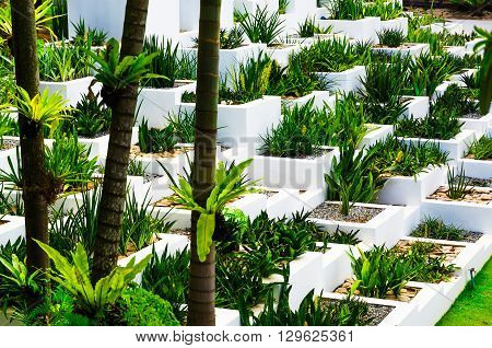 Pattaya, Thailand - March 18, 2016: A Vivid White Wall With Planter Boxes Holding Plants At Nong Noo