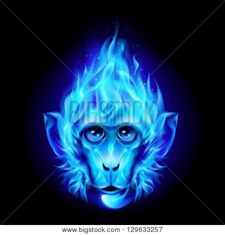 Monkey head in blue fire isolated on black