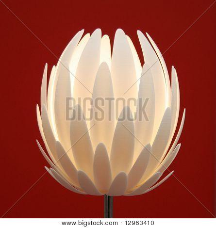 Blume-Lampe