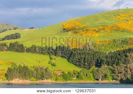 Rural Scene near Dunedin at Otago Region Southern island New Zealand - cloudy sky