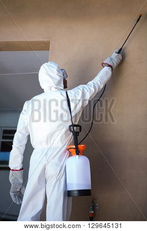 Rear view of a man doing pest control at home