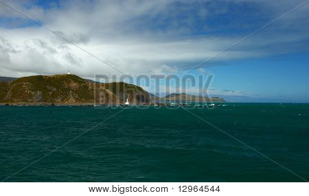 New Zealand Coastline View
