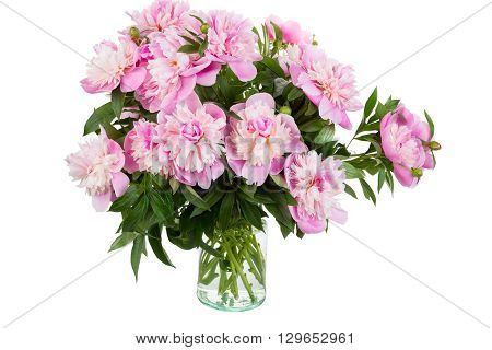Big bouquet of pink peonies in a transparent vase it is isolated a white background