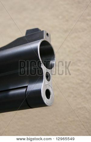 bore shotgun