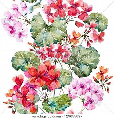 Beautiful pattern with nice hand drawn watercolor geranium flowers