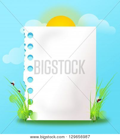 White blank paper sheet decorated with grass ladybug and sun