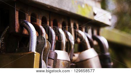 Selection of padlocks left on a gate