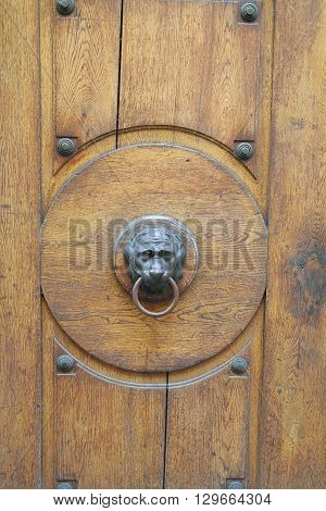 The picture was taken in Germany. The picture shows the door handle in the form of a lion's head. The handle is mounted in an old wooden door.